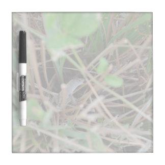 lizard hide and seek in grass reptile animal Dry-Erase board