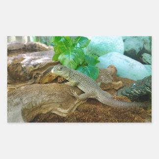 Lizard in a Terrarium Rectangular Sticker