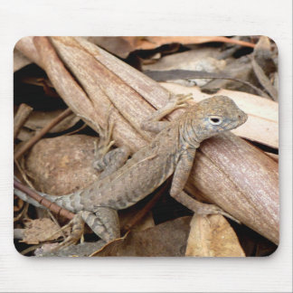 Lizard in the Dry Leaves Mouse Pad