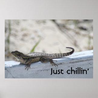 Lizard, Just chillin' Poster