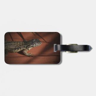 lizard looking down on wood background animal bag tag