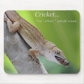Lizard Lunch Mouse Pads
