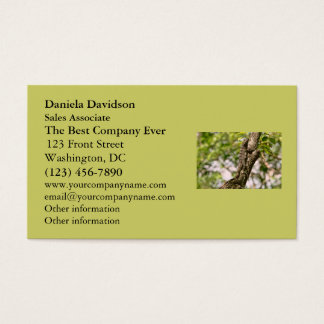 Lizard on a Tree in the Sun Business Card