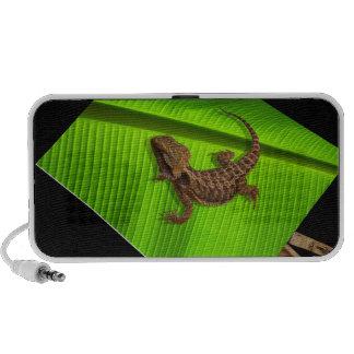 Lizard on Canvas Mp3 Speaker