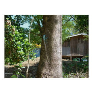 Lizard On Tree Print