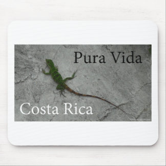 Lizard on Wall Costa Rica Pura Vida Mouse Pad