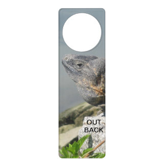 Lizard Out Back Door Hangers