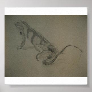 Lizard, pencil, 1984 print