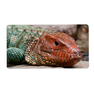 Lizard Personalized Shipping Labels