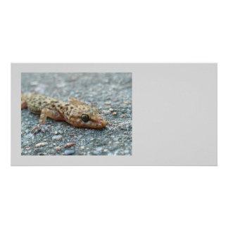 Lizard Photo Card