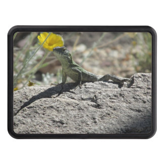 Lizard Tow Hitch Covers