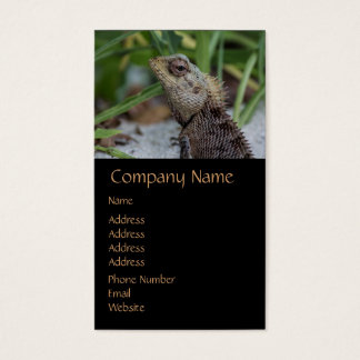 Lizard Reptile Nature Photography Business Card