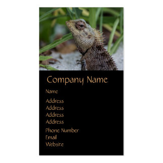 Lizard Reptile Nature Photography Double-Sided Standard Business Cards (Pack Of 100)