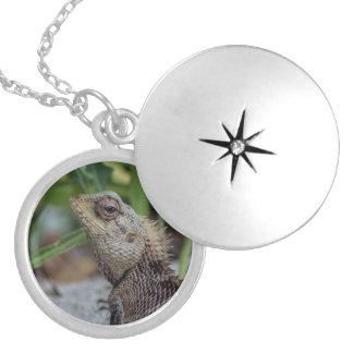 Lizard Reptile Nature Photography Locket Necklace