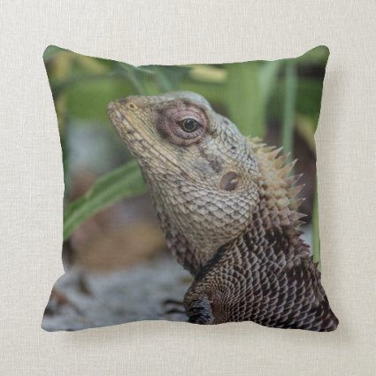 Lizard Reptile Nature Photography Pillows