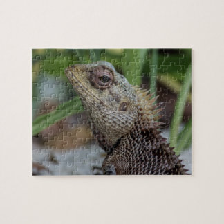 Lizard Reptile Nature Photography Jigsaw Puzzle