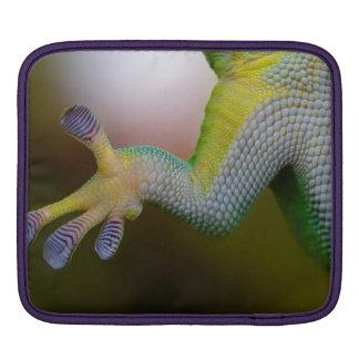 Lizard Rickshaw Macbook Sleeve