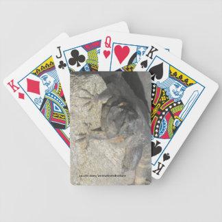 Lizard Rock playing Cards