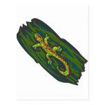 Lizard Salamander Post Card