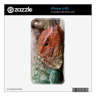 Lizard Decal For The iPhone 4S