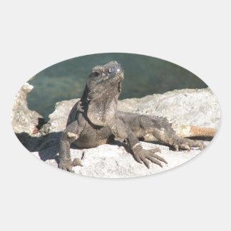 Lizard Sticker