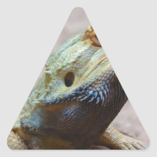 Lizard Triangle Stickers
