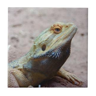 Lizard Ceramic Tile