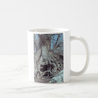 lizard tree in NY Winter Coffee Mug