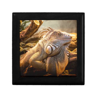 Lizard Up Close Keepsake Box