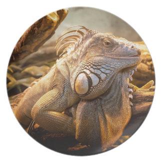 Lizard Up Close Melamine Plate