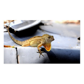 Lizards Business Card or Bookmark