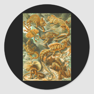 Lizards Classic Round Sticker
