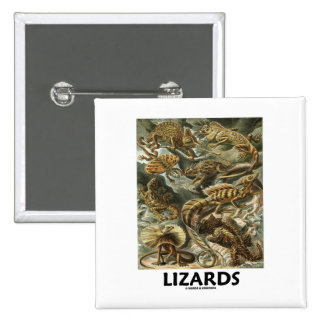 Lizards (Ernest Haeckel Artforms Of Nature) 2 Inch Square Button