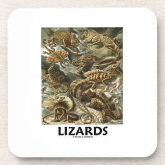 Lizards Ernest Haeckel Artforms Of Nature Drink Coaster