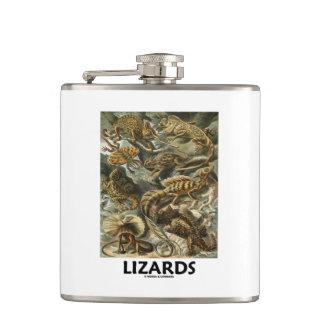 Lizards Ernest Haeckel Artforms Of Nature Hip Flask