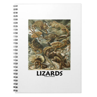 Lizards Ernest Haeckel Artforms Of Nature Notebook