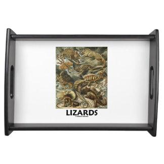 Lizards Ernest Haeckel Artforms Of Nature Serving Tray