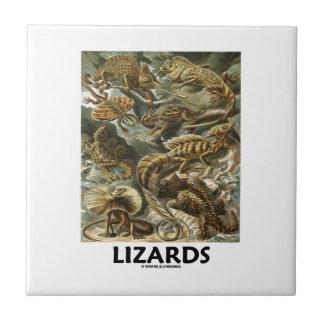 Lizards Ernest Haeckel Artforms Of Nature Tile