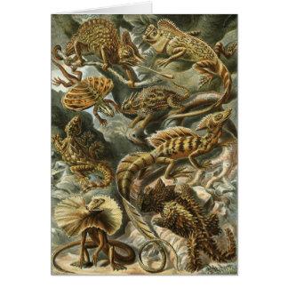 Lizards - Ernst Haeckel Card