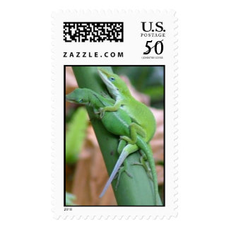 Lizards in Love Postage
