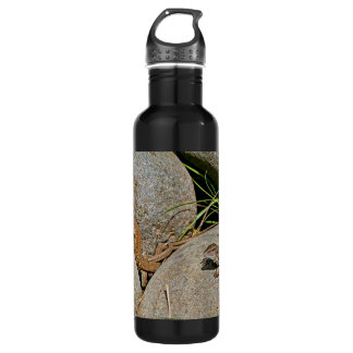 Lizards Mating Stainless Steel Water Bottle