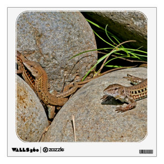 Lizards Mating Wall Graphic