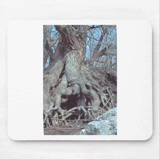 Lizzard tree mouse pad