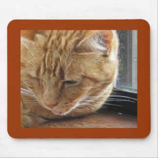 Lizzie en el Windowsill Tapete De Ratones