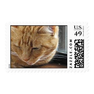 Lizzie on the Windowsill Postage Stamp