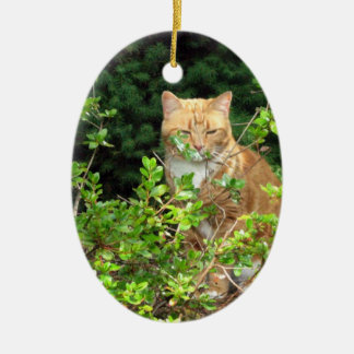 Lizzie, the cat, in the Front Yard Ceramic Ornament