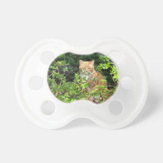 Lizzie the cat in the Front Yard Baby Pacifier