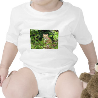 Lizzie the cat in the Front Yard Bodysuit