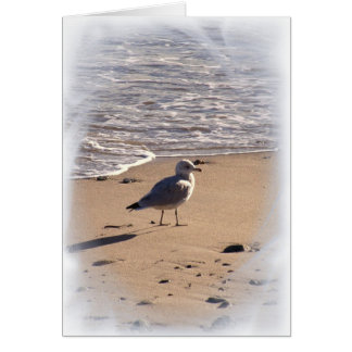 Lkes Long Walks on the Beach Greeting Cards