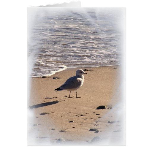 Lkes Long Walks on the Beach... Stationery Note Card